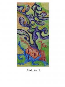 014 - MEDUSA 2